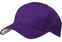 purple cap IPL 2016